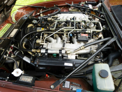 1981 Jaguar XJ-S 5.3 V12 HE Engine Bay 1